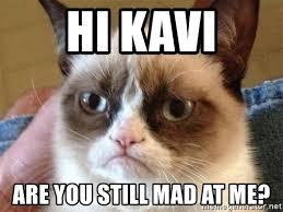 U Still Mad Meme - you still mad cat lekton info