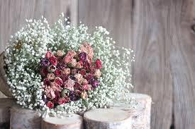 Baby S Breath Flower Aliexpress Com Buy Dried Flowers Baby U0027s Breath Gypsophila Rose