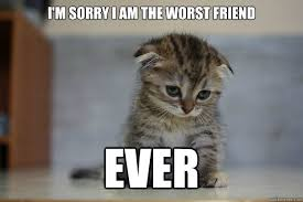 I Am Sorry Meme - i m sorry i am the worst friend ever sad kitten quickmeme