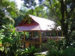 yoga retreats cashew hill jungle lodge tranquil paradise