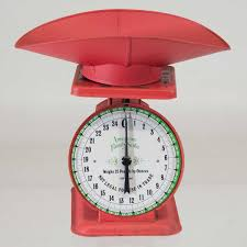 fab com kitchen scale red for the home accessories more
