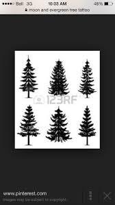 63 best inspo images on fern leaf