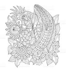 hand drawn parrot in the sunflower garden for coloring page