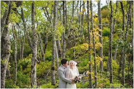 wedding photographers nc hartman outdoor photography wedding photographers asheville