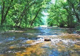 Area Rugs Dalton Ga Lawsuit Claims Dalton Ga Carpet Companies Polluted Alabama