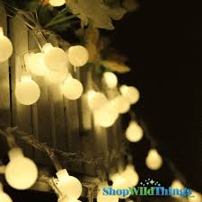 David Tutera Fairy Lights Light Curtains Micro Firefly Fairy Led U0026 Cafe Shopwildthings