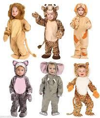 Animal Halloween Costumes Tweens Animal Halloween Costumes Kids Kqlszgrh Jpg 676 800