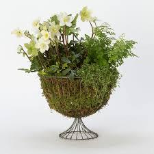 Outdoor Vase Best 25 Urn Planters Ideas On Pinterest Planters Shade