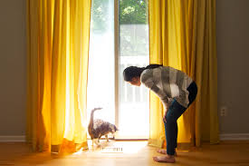 Curtains For Drafty Windows Window Treatments Best Window Treatments Window Treatment Ideas
