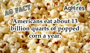 Seeking Popcorn Americans Eat About 13 Billion Quarts Of Popcorn A Year Aghires