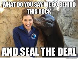 Pickup Line Meme - pick up line seal pick up lines boys need to use them