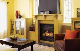 Living Rooms With Wood Burning Stoves All About Gas Fireplaces This Old House