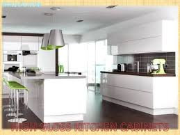 Gloss Kitchen Cabinet Doors White High Gloss Kitchen Cabinets Kgmcharters