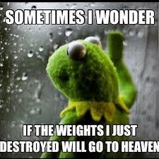 Weight Lifting Memes - kermit weight lifting memes memes pics 2018