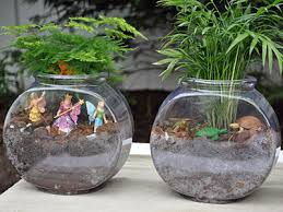 fish bowl terrariums pictures photos and images for facebook