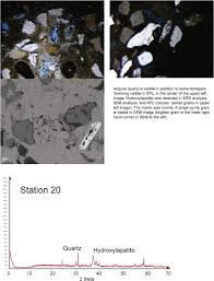 the archeology sedimentology and paleontology of gray u0027s reef