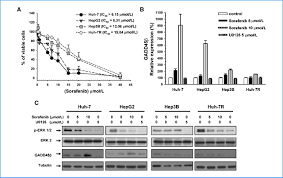 induction of dna damage inducible gene gadd45β contributes to