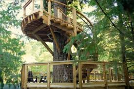 Treehouse Living Microsoft Built A Huge Treehouse For Their Employees New York Post