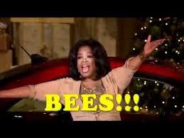 Oprah Winfrey Meme - know your meme oprah your best of the funny meme