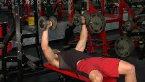 Flat Bench Press Dumbbell How To Do Flat Bench Dumbbell Press Youtube