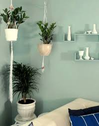 Accent Wall Living Room Aqua Accent Wall Living Room Makeover Corner Vignette Zz Plants