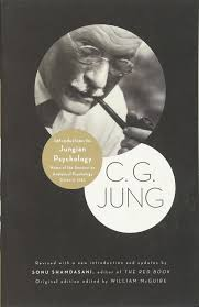 amazon com introduction to jungian psychology notes of the
