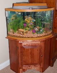 aquariums fish tanks as wall unit decoration aquariums u0026 fish