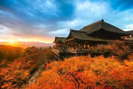 discovering the land of the rising sun