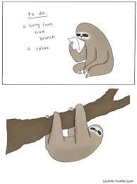 To Do List Meme - a sloths to do list sloths know your meme