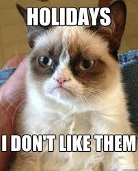 Memes About Christmas - the best of grumpy cat s christmas smosh