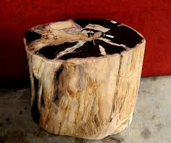 petrified wood end table petrified wood stump table made from genuine fossil wood http www
