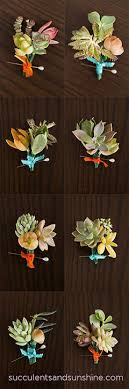 succulent boutonniere how to make succulent boutonnieres for your diy wedding