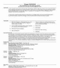 coaching resume hitecauto us