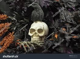 scary creepy halloween decorations skulls ravens stock photo