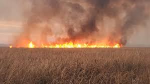 subaru fire fire inforum