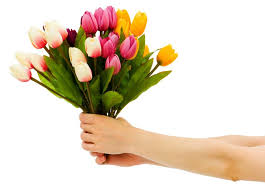 flower gift add more happiness to this season by gifting flowers