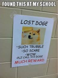 Lost Doge Meme - had a hard time not to laugh the whole day meme by rkdude97