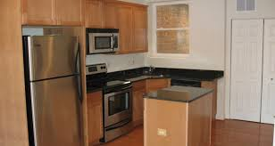 Custom Kitchen Cabinet Doors Online by Apotheosis Contemporary Kitchen Cabinets Tags Cheap Kitchen