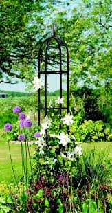 174 best plant supports images on pinterest gardening garden