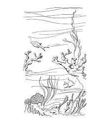 tropical beach coloring pages bluebonkers summer fun ocean reef summer coloring sheets