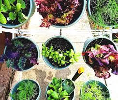Urban Vegetable Garden by Small Urban Vegetable Garden If You Live In A Fiskars Diy
