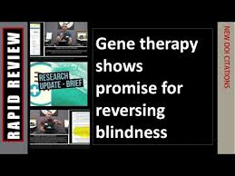 Gene Therapy For Blindness Blindness Reversed Through Simple Gene Therapy Animal Model