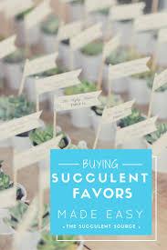 best 25 succulent favors ideas on pinterest succulent wedding
