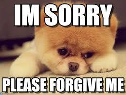 Forgive Me Meme - im sorry sad puppy meme on memegen