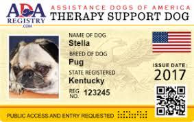 sample letters for emotional support dog service dog registry