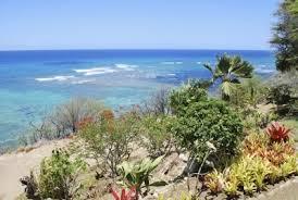 coastal garden ideas u2013 things to consider when planning ocean gardens