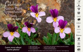 native plants of pacific northwest wnps