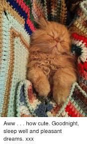 Goodnight Meme Cute - aww how cute goodnight sleep well and pleasant dreams xxx aww