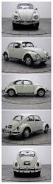 volkswagen beetle modified black best 25 wv car ideas on pinterest wv lottery results
