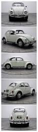 volkswagen vintage square body best 25 wv car ideas on pinterest volkswagen beetle vintage